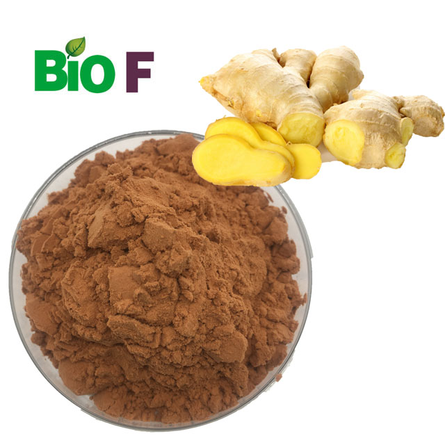 Pure Black Ginger Extract Gingerols Powder Extract