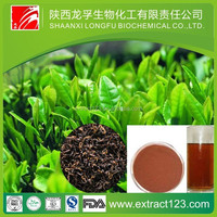 High quality instant black tea extract powder