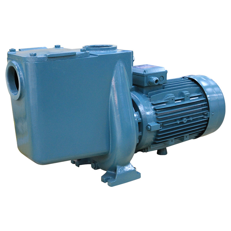 330V Guangzhou <strong>Manufacture</strong> Swimming Pool Spa Water Pumps Equipment for Electric Pump
