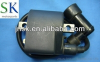 Motorcycle Engine Parts Ignition Coil AX100 (Made in China/OEM Quality)