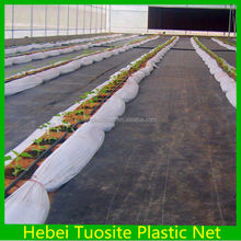 100% PP Non Woven Agriculture Ground Cover/Mulch Film/Weed Mat