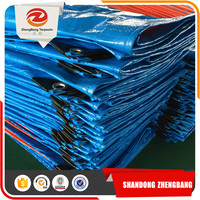 Canvas/truck/birthday PE tarpaulin covers plastic sheet woven fabric
