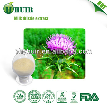 Milk Thistle Extract powder/HACCP