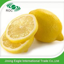 Wholesale fresh yellow sour lemon in bulk cold storage