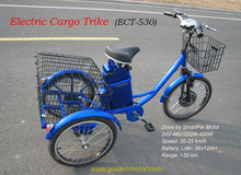 Hot selling NEW 3 wheel motorized bike,electric cargo trike, three electric cargo tricycle with our Smart Pie Hub Motor