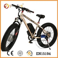 green power long range electric bike store