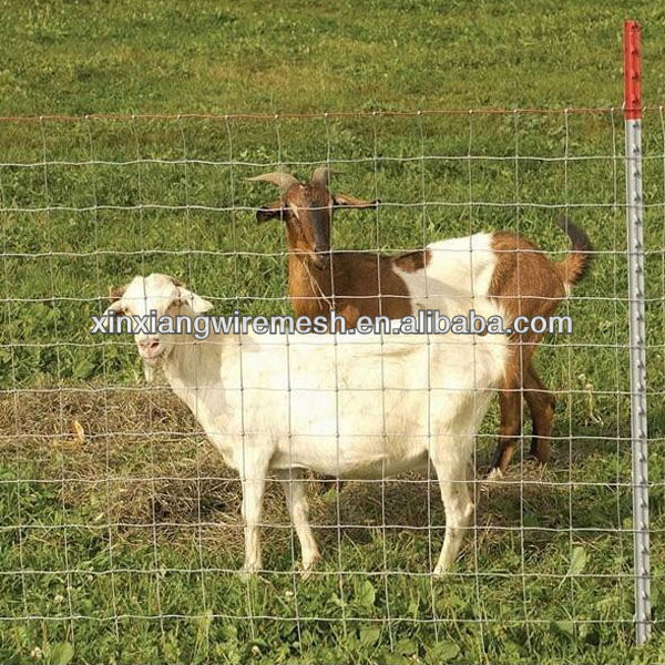 2017 Durable Firm Livestock Metal field fence ,sheep fence,Cattle Fence