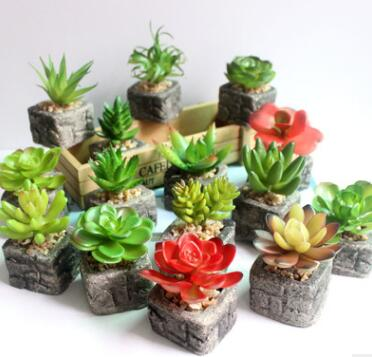 Assorted Green Artificial Faux Mini Succulent Plants <strong>w</strong>/ Pebble Sand Potted Stone Like Cement Pot