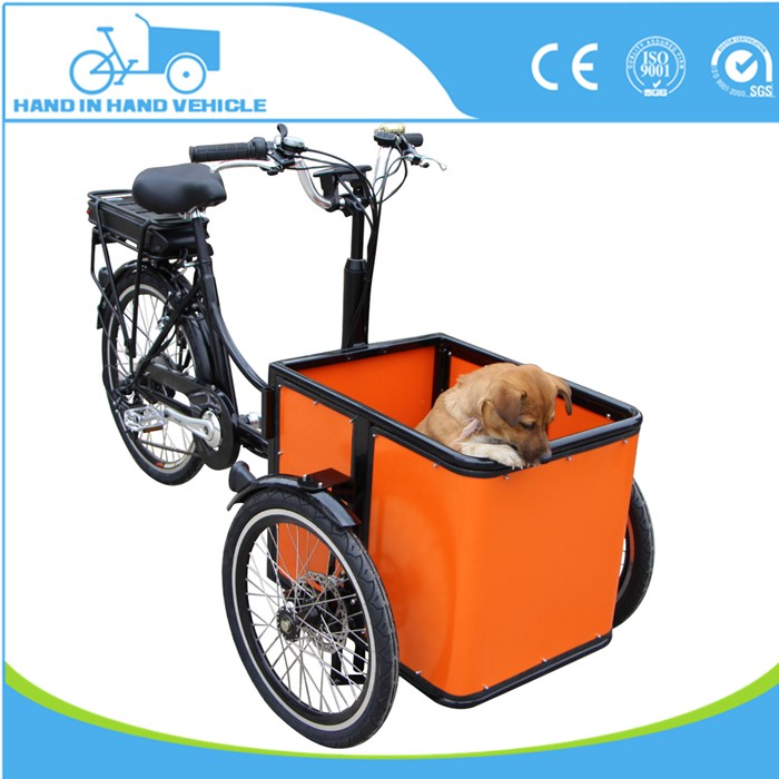 factory price three wheel small size tricycle mini electric vehicle