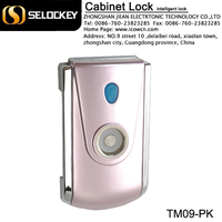Made in China TM iButton Card Key Lock for Lockers Electronics