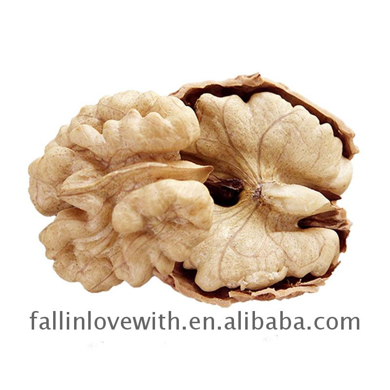 Hot sale walnuts from the tree Sold On Alibaba