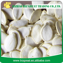 Roasted Snow White Pumkin Seeds With Salt Coat for sale