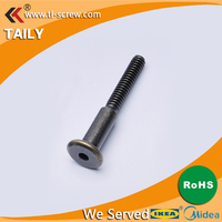 pan head anti-theft secure bolt with hole in end