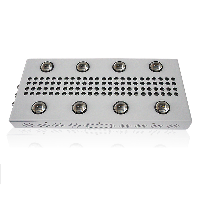 Noah 8S 1200W full spectrum grow light veg and bloom cob led grow light for indoor greenhouse