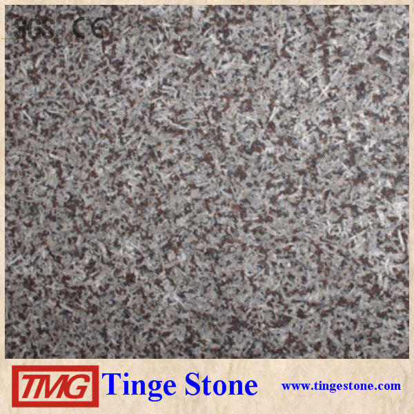 San Louis Granite Slab Granite Tile 40x40