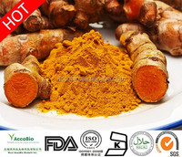 Best quality Turmeric Extract, Hot sale Turmeric Extract powder, Curcumin