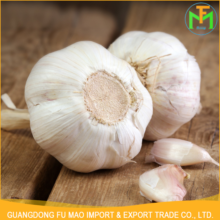 China Factory Price 5.5Cm Organic Natural New Crop Shandong Good Farmer Garlic