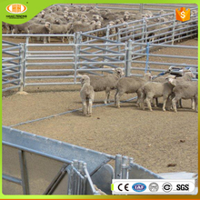 Online shopping low price high quality china supply anti bruise bar sheep yard panels for live sheep