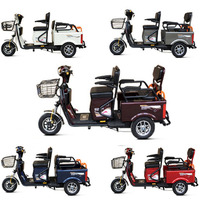 Chinese Supplier High Quality Electric Tricycle with Great Power for Handicapped Elder