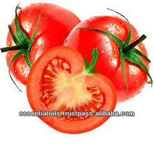 BEST SUPPLIER OF TOMATO SEED OIL