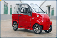 Adult Electric Car made in China with high quality