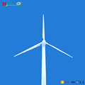 The good quality of 500kw wind turbine /wind generator
