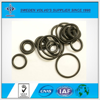 Viton O Ring Used for Various Sealed Forms