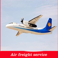 Shenzhen Air freight forwarder to Los Angeles/San Francisco /New York/phoenix/Salt Lake City-roger