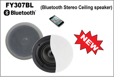 2.4GHz ISM Band Multimedia Active Bluetooth Pro Sound Ceiling Speaker