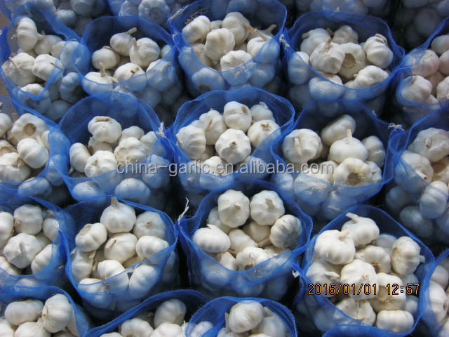 Fresh Natural White Garlic