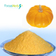Spray dried free dried pumpkin concentrate powder