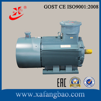 132 kw and 4 Pole Explosion proof motor for variable frequency adjustable