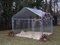 chain link double dog kennel lowes/dog kennel building