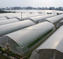 Low Cost Agricultural Greenhouse Vegetables Greenhouse with PE Film Cover
