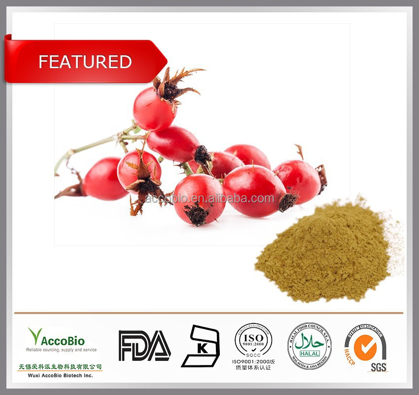 2015 HOT-SELLING!!! Top quality Natural Rosehip extract, Rosehip extract powder, Rose hip P.E. 10% Vitamin C