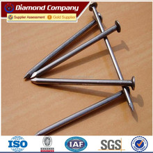 Plastic Head Stainless Steel Nail,plastic cap nail,stainless steel nail/nails with high quality