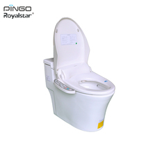 Energy-saving Factory Promotional Sanitary Ware Ceramic White Lady Wholesale Smart Bidets Cheap Toilets For Sale RSD-Z80H