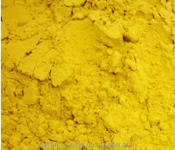 Dried Cattail Pollen powder from Typha angustifolia L. yellow color for herbal medicine