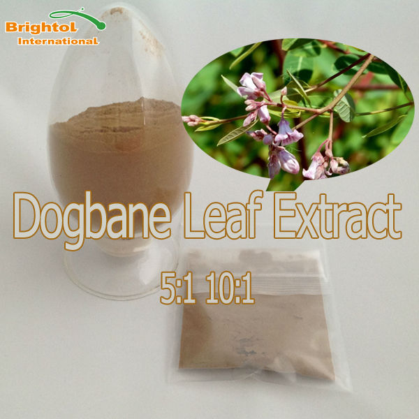 High Quality Dogbane Leaf Extract