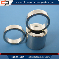 Wholesale Customized Industrial Ring Ndfeb Magnet