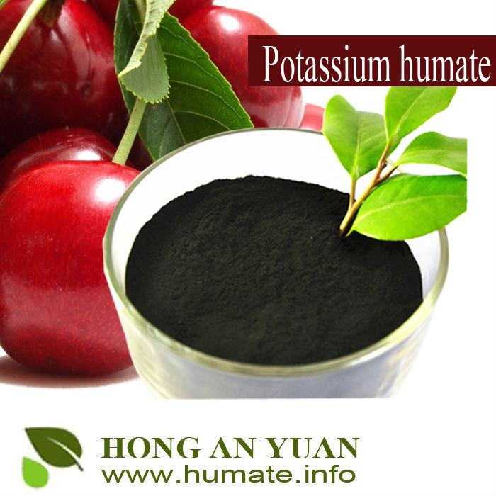 Organic Fertilizer High Soluble Potassium Humate 85% Powder / Humic acid Price