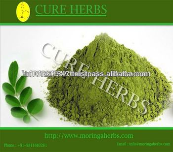 Dry moringa powder from India with best price