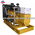Natural Gas Generator set /fuel Biogas,Syngas / Diesel generator / Gas Engine Manufacturer