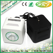 COB led grow light 100w decorative plant indoor grow lights