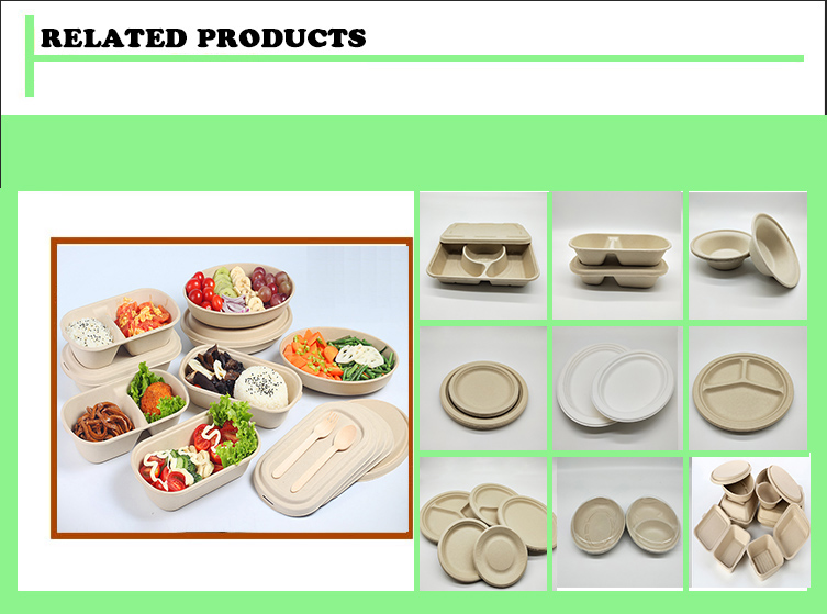 Biodegradable  Disposable Wheat Straw Pulp Paper Food container