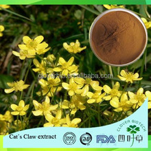 Medical Cat's Claw extract/Ranunculus Ternatus Thunb extract