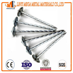 electrc galvanized twist shank umbrella head roofing nails