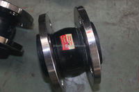 Rubber lined expansion joint