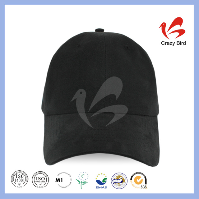 2016 custom Promotional Cap