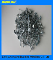 Galvanized Umbrella Head Roofing Nail With Wire Diameter BWG8-BWG13